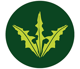 vegetation control
